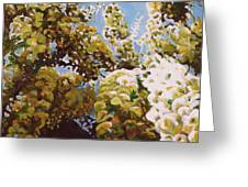 Up Into Wisteria Greeting Card