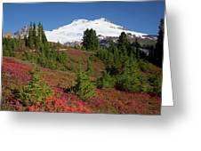 Usa, Washington State, Mount Baker Greeting Card