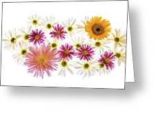 Variety Of Flowers Against White Greeting Card