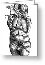 Vesalius: Thoracic Cavity Greeting Card