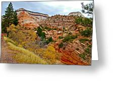 View Along East Side Of Zion-mount Carmel Highway In Zion National Park-utah   Greeting Card