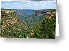 View From Sun Temple In Mesa Verde National Park-colorado  Greeting Card