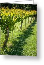 Vineyard Farm Greeting Card