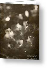 Vintage Floral Background Greeting Card