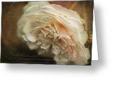 Vintage Tea Rose Greeting Card