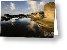 Visions Of Nature 6 Greeting Card