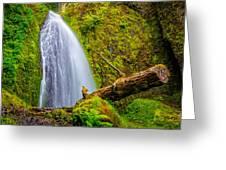 Wahkeena Falls Oregon Greeting Card