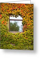 Wall Overgrown With Fall Colored Vine And Ivy Greeting Card