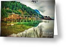 Washington Forest Greeting Card