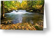 Waterfall On Whatcom Creek Greeting Card