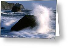 Waves Breaking On Shore Greeting Card