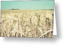 Wheat Crop Greeting Card