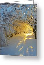 When Snow Falls Nature Listens Greeting Card