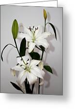 White Lily Spray Greeting Card