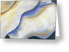 White Rose Two Panel Four Of Four Greeting Card