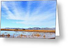 White Water Draw Preserve Greeting Card