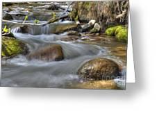 Whites Creek Greeting Card