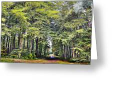 Whitwell Wood Greeting Card
