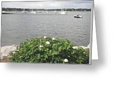 Wickford Harbor Greeting Card