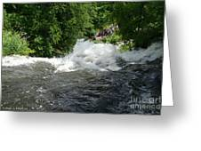 Wild Water Greeting Card