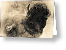 Wild West Bison Greeting Card