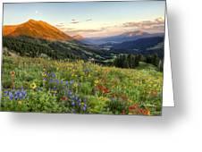 Wildflower Moonrise Greeting Card
