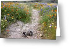 Wildflower Wonderland 11 Greeting Card