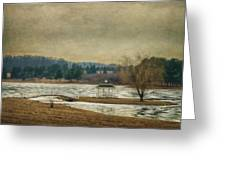 Willow Lake  Greeting Card by Kathy Jennings