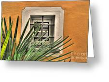 Window Greeting Card
