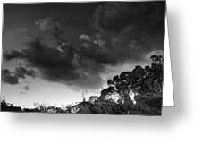Windy Trees Greeting Card