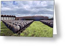 Winery Wine Barrels Outside Clouds Panorama Greeting Card