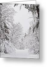 Winter Road Greeting Card by Cheryl Baxter