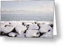 Winter Shore Of Lake Ontario Greeting Card by Elena Elisseeva