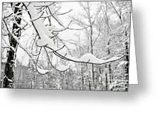 Winter Snow Scene In New England Greeting Card