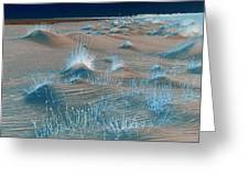 Winters Dunes IIa Greeting Card