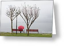 Woman Sitting On A Bench Greeting Card