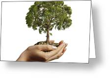 Womans Hands Holding Soil With A Tree Greeting Card