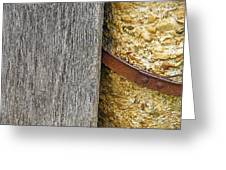 Wood Concrete And Steel In Color Greeting Card
