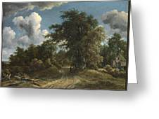 Woodland Road Greeting Card