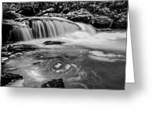 Yellow Creek Falls Great Smoky Mountains Greeting Card