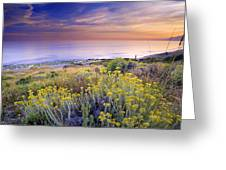 Yellow Flowers At The Sea Greeting Card