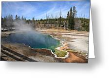 Yellowstone Park - Geyser Greeting Card