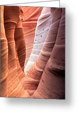 Zebra Canyon  Greeting Card