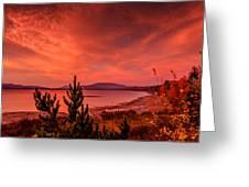 10-25-2014-2 Greeting Card