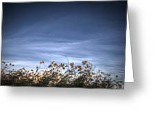 10 Foot High Grass Greeting Card