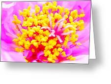 10512np Greeting Card