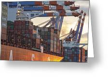 Hamburg Harbor Container Terminal Greeting Card