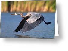 Usa, California, San Diego, Lakeside Greeting Card