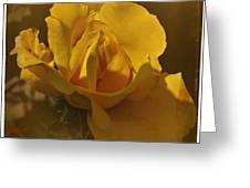 Vintage Yellow Rose Greeting Card