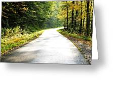 Williams River Scenic Backway Greeting Card by Thomas R Fletcher